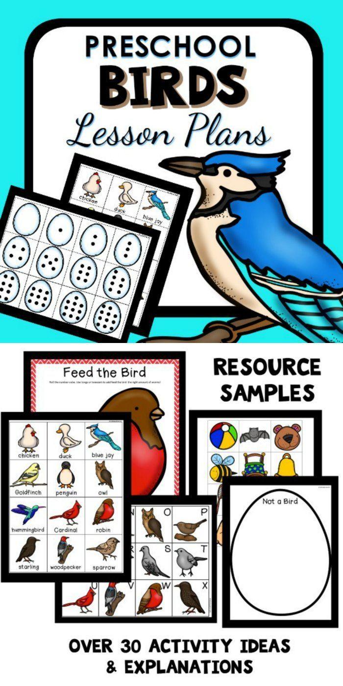 Bird Theme Preschool Classroom Lesson Plans Animals Preschool Lessons Preschool Lesson Plans Science Activities For Toddlers [ 1400 x 700 Pixel ]