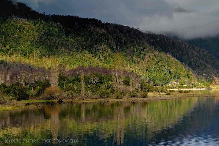 Luces y bosques - Lago Panguipulli (Chile)
