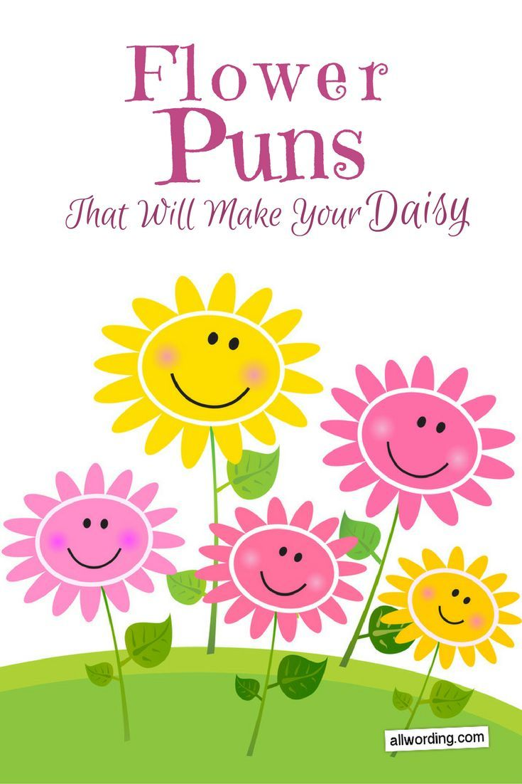 This List Of Flower Puns Will Make Your Daisy Flower Puns Flower Quotes Daisy Quotes