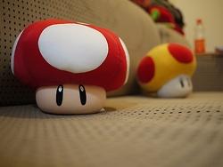 mushroom ~ву: grαcє♛ ≫[amazinggrace31]≪