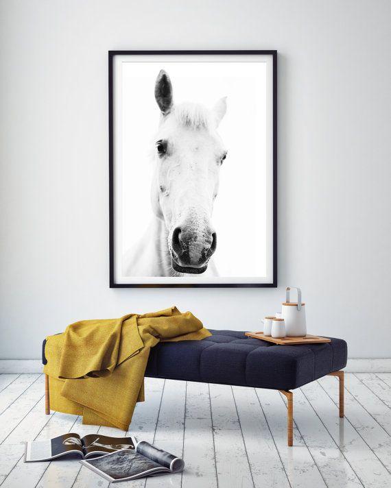 White horse portretfotografie, zwart-wit paard fotografie, paard fotografie kunst aan de muur, witte paard kunst, paard afdrukken, witte paard foto