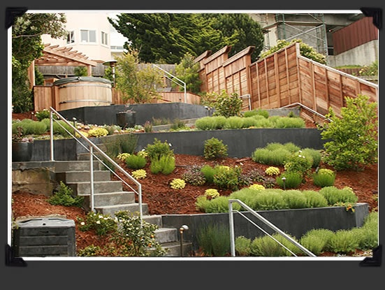 Terracing A Steep Backyard : 1000+ images about Hillside Terracing on Pinterest  Terraced garden