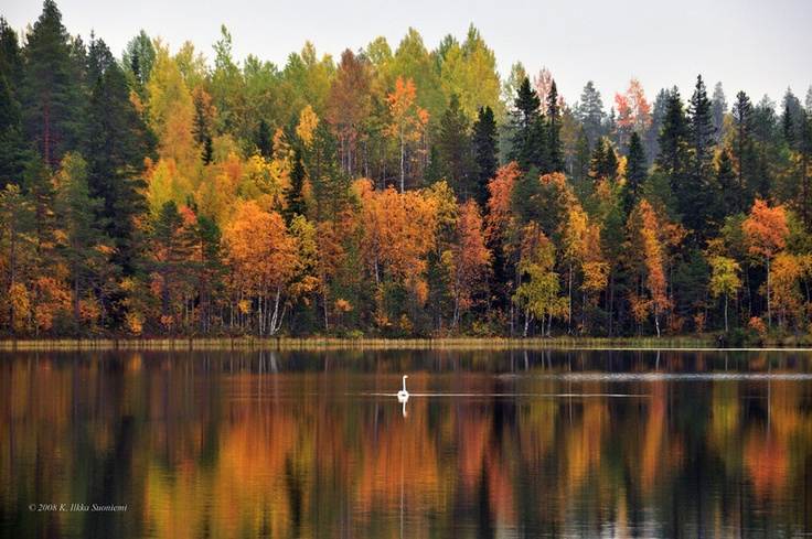 Autumn in Suomussalmi, Finland