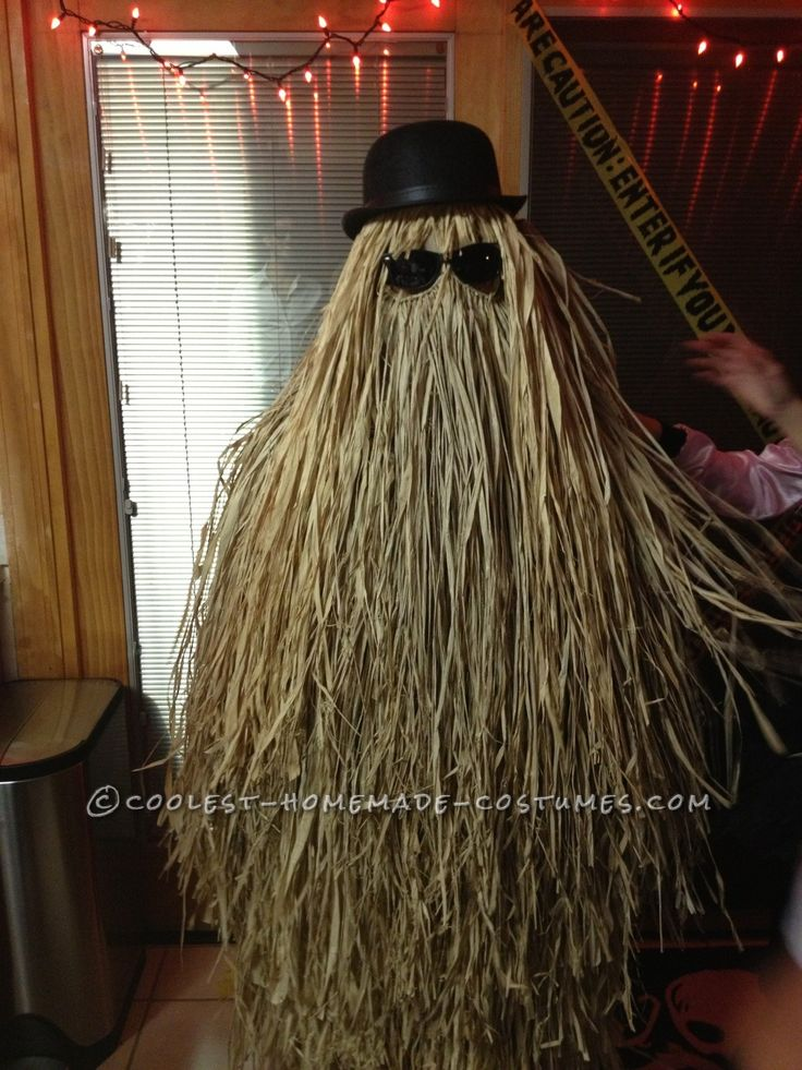 Super-Easy DIY Cousin Itt Costume from the Addams Family... Makes a great prop as well!: Diy Costumes, Super Easy Diy, Cousins Itt, Halloween Costumes, Itt Costumes, Hula Skirts, Diy Cousins, The Addams Families, Homemade Costumes