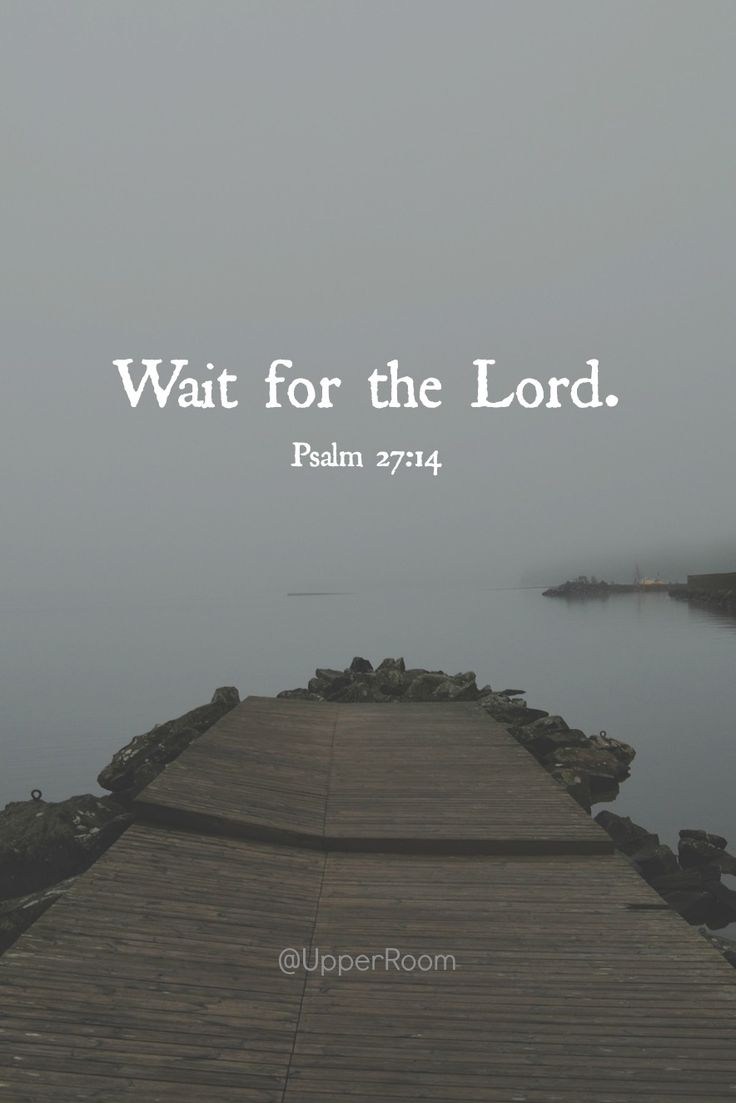 Wait for the Lord; be strong, and let your heart take courage.- Psalm 27:14