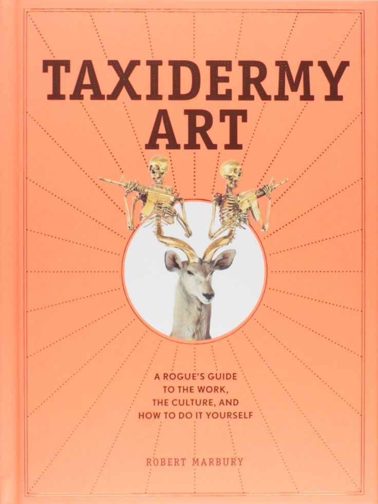 The 18 best books photography images on pinterest altered book taxidermy art a rogues guide to the work the culture and how to solutioingenieria Gallery