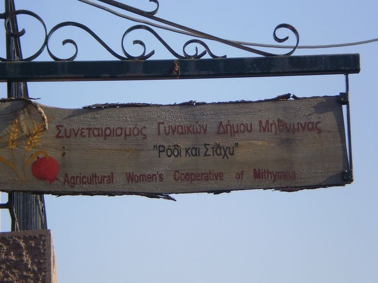 Molyvos Women's co-op. We visited many of the women's co-ops dotted around Lesvos. We had one of our best lunches at the one in Petra.