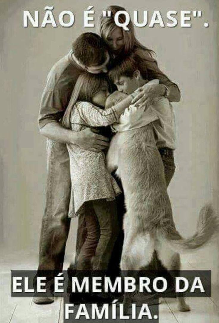 MEU FILHO, MEU BEBÊ SEMPRE! <3 <3 <3 #petmeupet #filhode4patas #maedepet #paidepet #cachorro #gato