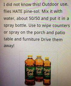Easy way to keep those annoying flies awAy this summer &with out all the hassle: