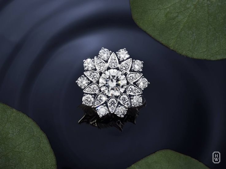 Lotus Cluster Ring by Harry Winston #Rings #Jewelry #Bling