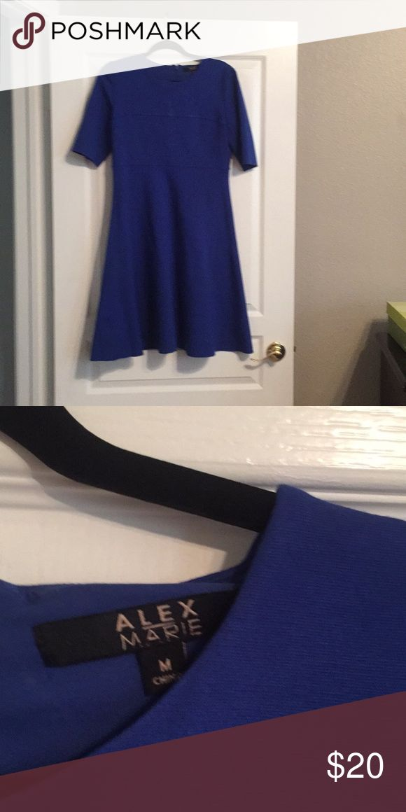Alex Marie Blue Dress Cute a line dress. I'm 5'4. Sleeves hit me at my elbows and it comes to my knees. Very cute with a big black belt and boots. Alex Marie Dresses