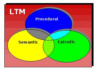 """Long Term memory: three overlapping components- Semantic memory stores concepts and ideas  Episodic (sometimes referred to as """"autobiographical"""" or """"narrative"""") memory contains memories of events. Procedural memory concerns skills and """"know-how"""" rather than """"know-that"""" knowledge.  Pinned by www.preschoolspeechie.com"""