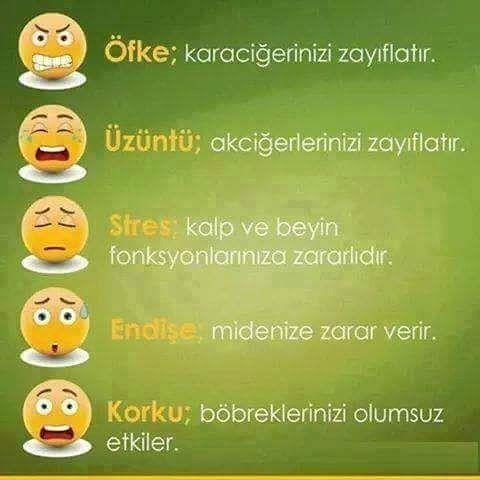 """38 Beğenme, 1 Yorum - Instagram'da Gıda Bilinci (@gida.bilinci): """"#gidabilinci #gidabilinci2"""""""