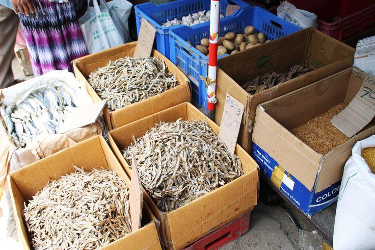 Vis, gedroogde vis en garnalen Sri Lanka