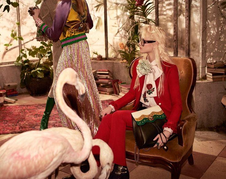 Gucci Pre-Fall 16 Campaign | Photography Glen Luchford