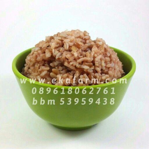 [Beras Merah dan Beras Menthik Wangi Susu]  Nasi beras merah dan menthik wangi susu dengan komposisi 1:2. Nasinya jadi lebih pulen dan lebih enak. Suami pun jadi memuji masakanku.  Beras Merah Rp 15.500 Beras Menthik Wangi Susu Rp 15.000 per kg www.ekafarm.com