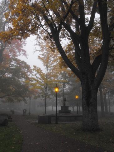Foggy morning in #Charlottetown #PEI Canada