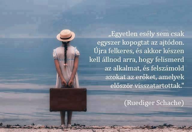 Ruediger Schache gondolata a lehetőségekről. A kép forrása: Gyury Papp