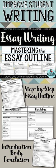 Help with essay writing dummies high school
