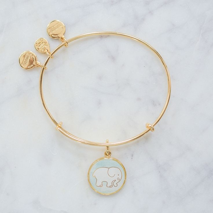 ALEX AND ANI Mint Watercolor Gold Charm Bangle
