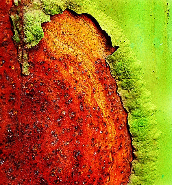 Lime green and rust