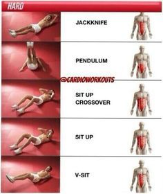 what exercises target what muscles  חיפוש בgoogle  full