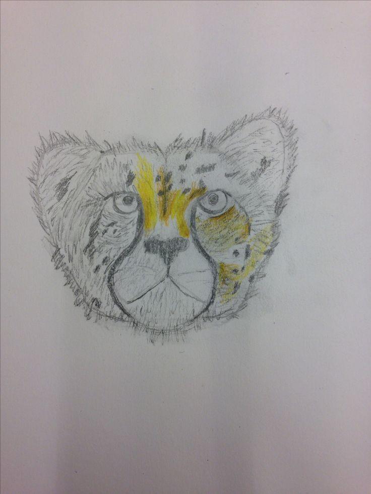 Daarvoor  in dezelfde les hadden we een schets gemaakt. Ik dus van een cheetah dat lukte wel goed een les daarna ging ik het met kleur uitproberen.