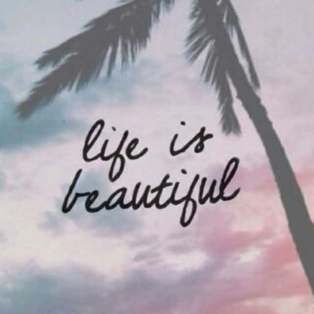 Laptop Wallpapers Tumblr Quotes: 17 Best Images About Quotes On Pinterest