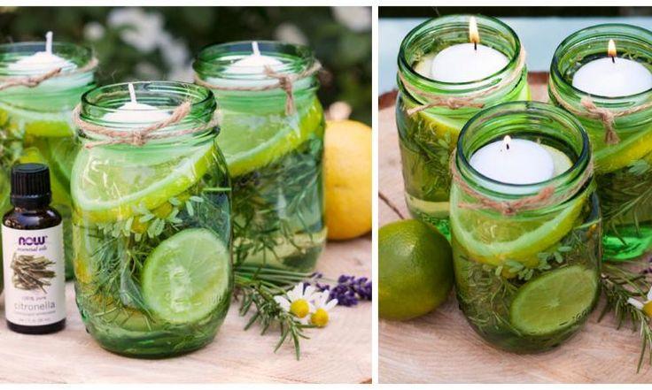 Éloignez les moustiques avec des herbes et du citron tout en décorant joliment votre table!