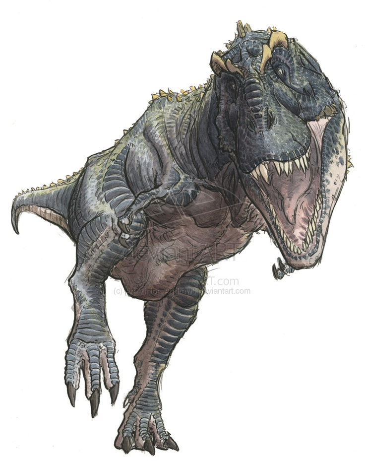Tyrannosaurus; Late Cretaceous (67 - 66 Ma); Theropod; Discovered by Barnum Brown, 1900-1902; Described by Osborn, 1905; Artwork by Andrew Minniear