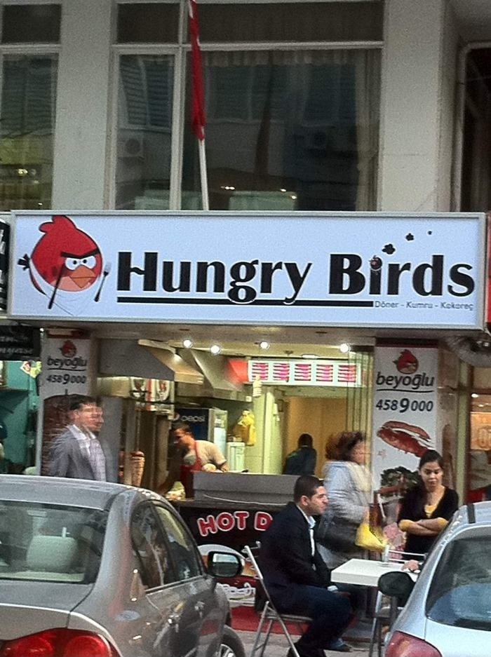 Hungry Birds..!