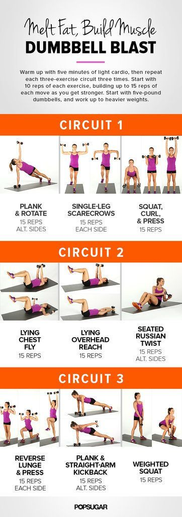 Weight Training For Women | Dumbbell Circuit Workout | POPSUGAR Fitness                                                                                                                                                                                 More