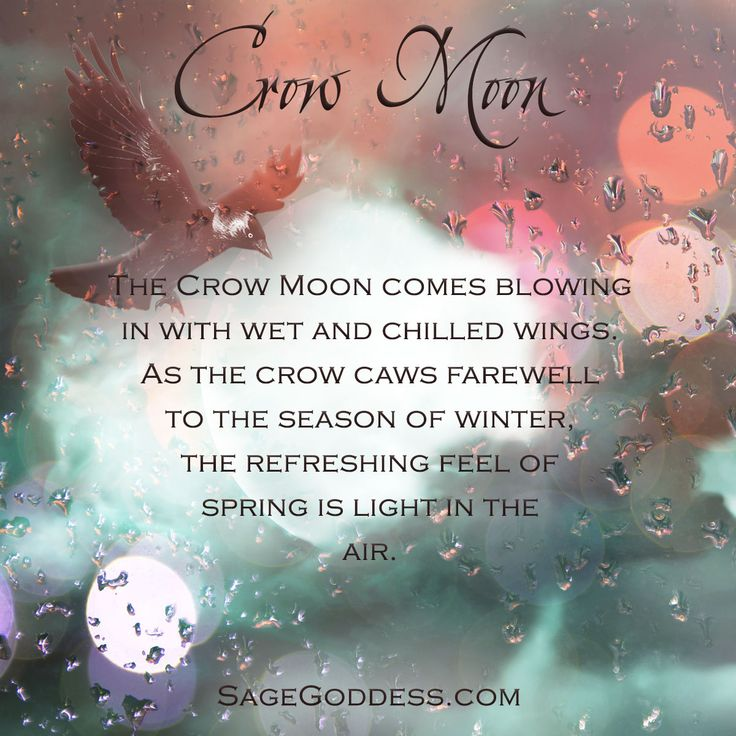 Sunday's Full Moon is known as the Crow Moon. As this bird of omen bids farewell to the season of winter, the refreshing feel of spring brings with it fertile new growth. If you hear their caws, join them in welcoming new beginnings.