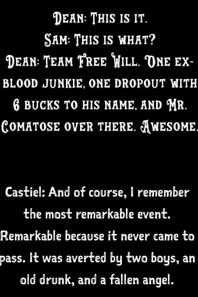 Team Free Will. One Ex-Blood Junkie,One Dropout With 6 Bucks To His Name,And Mr.Comatose Over There. Awesome.