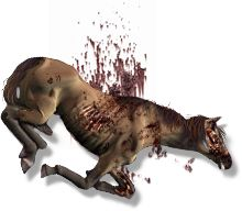 Dead+Horse+2+by+hero339.deviantart.com+on+@DeviantArt