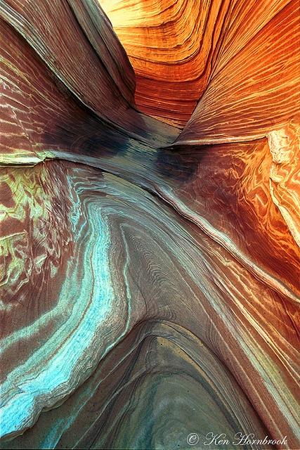 Patterns in Nature  R285N03 by Ken Hornbrook, via Flickr