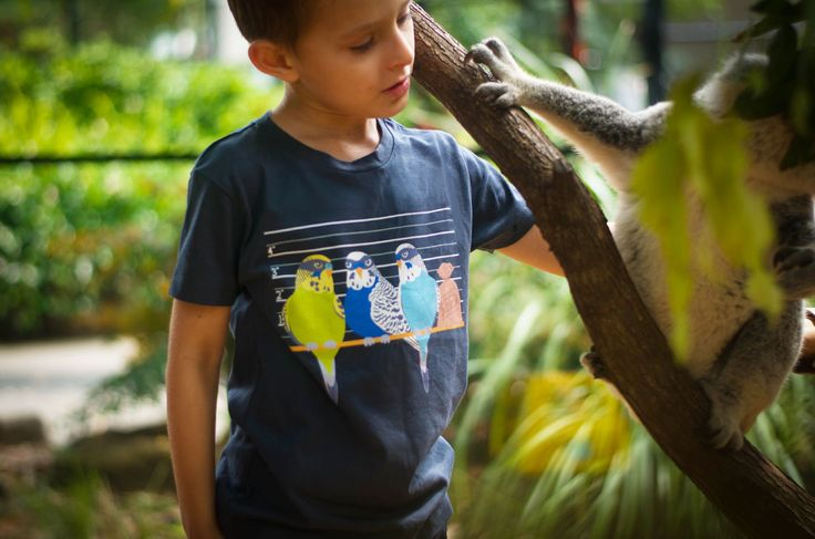Budgie Smuggler t-shirt design