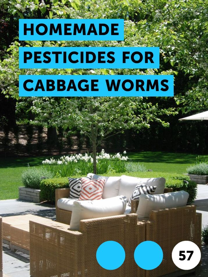 Homemade Pesticides for Cabbage Worms. Cabbage worms are a problem for gardeners. They typically