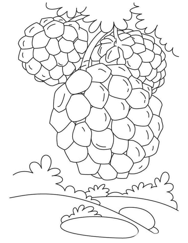 loy krathong coloring pages - photo#9