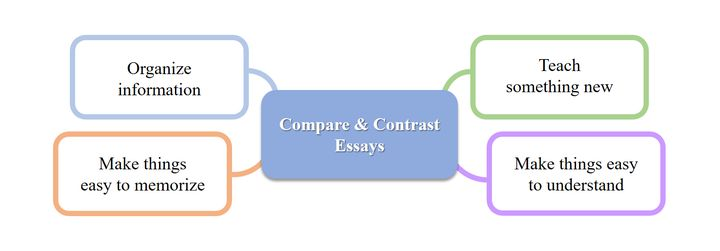 Compare and contrast essay for