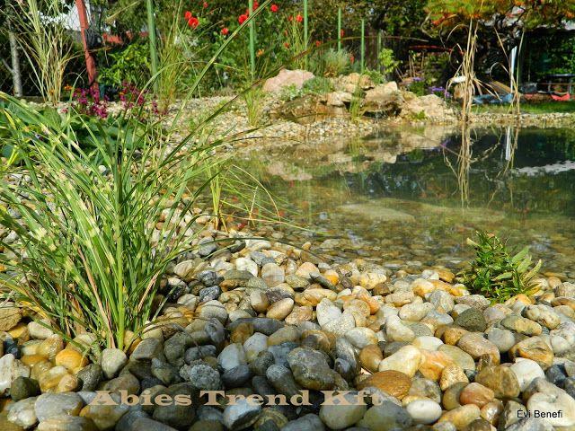 Kerti tavak, patakok, szökőkutak, vízesések, csobogók - Abies Trend Kft. .. - Picasa Webalbumok