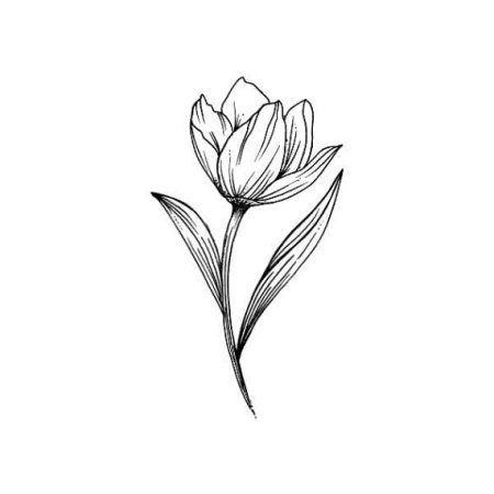 tulip tattoo outline images galleries with a bite. Black Bedroom Furniture Sets. Home Design Ideas