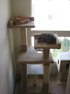 Best 25 cat trees diy easy ideas on pinterest cat house for Do it yourself cat condo