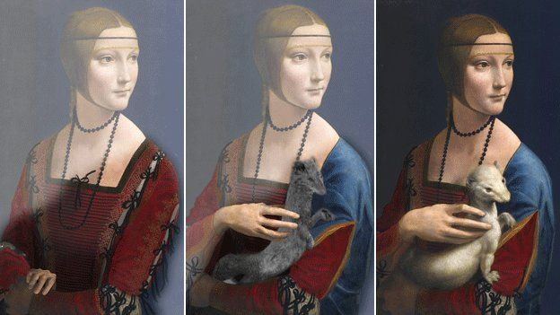 """Leonardo Da Vinci 'painted three Ermine portraits' - Mr Cotte has shown the artist painted one portrait without the ermine & 2 with different versions of the fur. Leonardo experts have described the new findings as """"thrilling"""" & said the discovery raises new questions about the painting's history."""