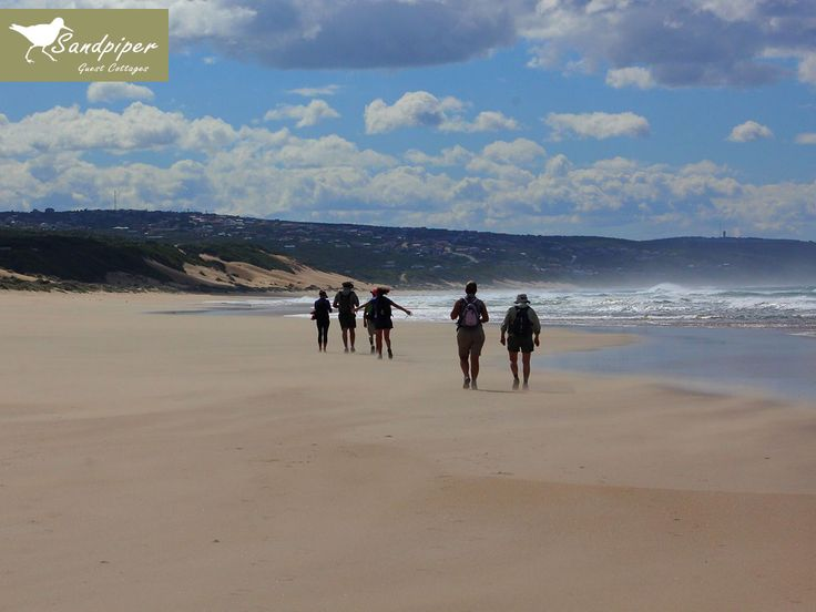 The Oystercatcher Hiking Trail is a fabulous eco-adventure. Rated as one of the top slack packing trails. Link: http://ow.ly/Mzwe30biF4G