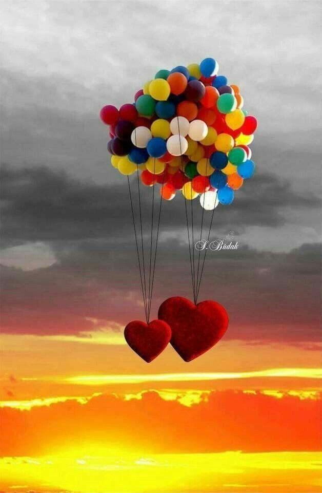 Pin Von Elizabet Soberanis Auf Eli Blumentapete Luftballons Herzliche Geburtstagswunsche