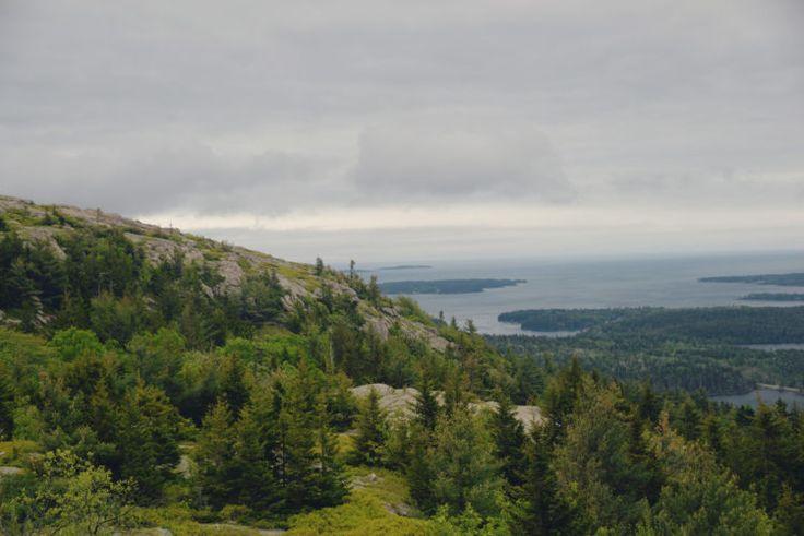 Acadia National Park drawntoecology.com