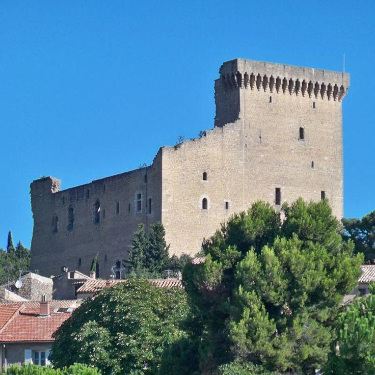 Châteauneuf du Pape, cette petite ville du Vaucluse, célèbre pour son vignoble, faisait partie du Comtat Venaissin, appartenant au St-Siège jusqu'au 18°s. Les papes d'Avignon y ont fait construire un chateau résidence qui domine la ville. Il n'en subsiste plus aujourd'hui que les hautes façades S et E