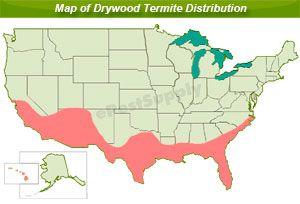 drywood termite distribution map