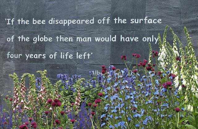 Bee Quotes: 62 Best Bee Keeping Images On Pinterest